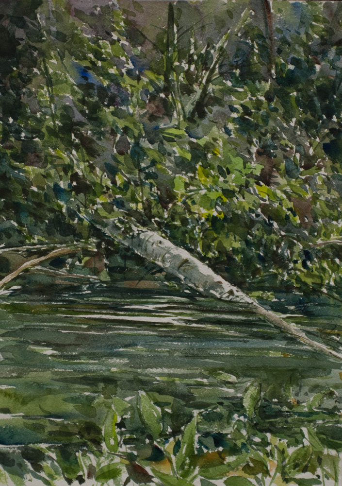 Fallen Birch, by artist Ron Hayes